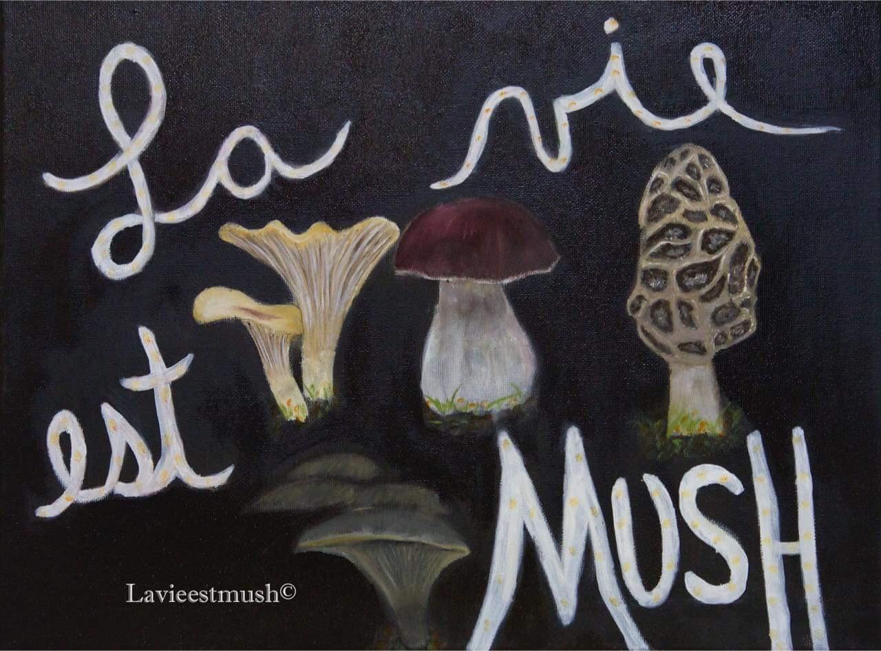 La vie est Mush