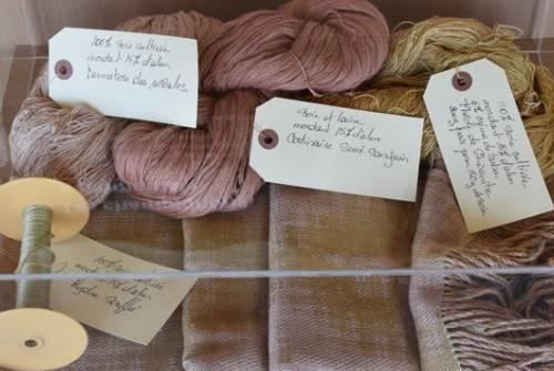 Formation - Coloration des fibres et de la laine à l'aide des champignons